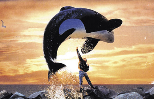 kinderfilms free-willy-free-willy-36918223-500-322